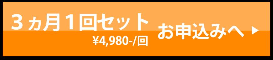 3ヵ月に一度4980円コース